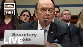 Download Trump Official Wilbur Ross Testifies Before House Oversight Committee | NowThis Video