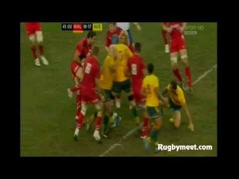 RUGBY TEST MATCH 2013 GALLES vs AUSTRALIA : Mike Phillips vs Quade Cooper