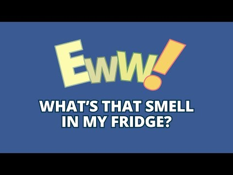 Use & Care Tips: Get Rid of Refrigerator Smells