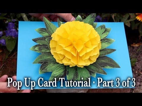 Flower Pop Up Card Tutorial Part 3 of 3
