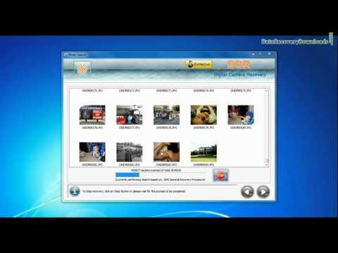 How to recover accidentally formatted or deleted pictures from Kodak Digital Camera