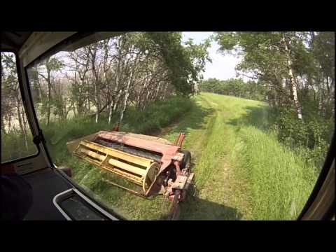 Cutting Hay In The Hundred Acre Woods