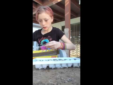 How to make homemade Popsicles fast and easy