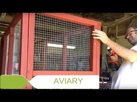 Building our Aviary!