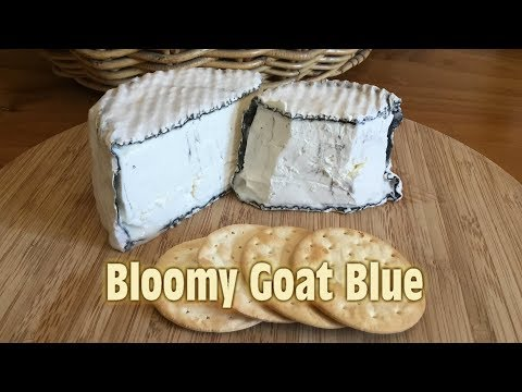 Bloomy Goat Blue with Taste Test