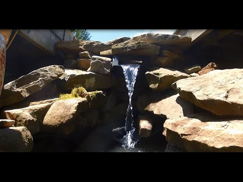 How to Easily Build a Small Pond - Time Lapse