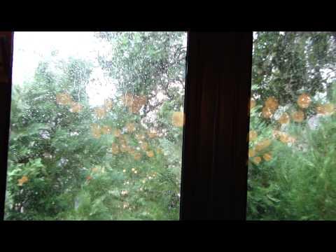 Epcot   Le Chefs de France  rain thru window 082612