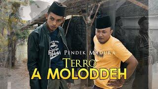 TERRO A MOLODDEH (Film Pendek Mata Pena)