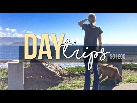Day Trips // Redwood National Park & Crescent City // S01E05 Travel Vlog - Full Time RV