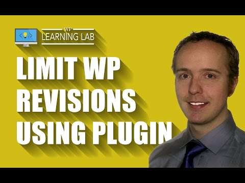 Revision Control Using A Simple WordPress Plugin
