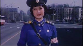 A Traffic Controller on Crossroads (North Korea)