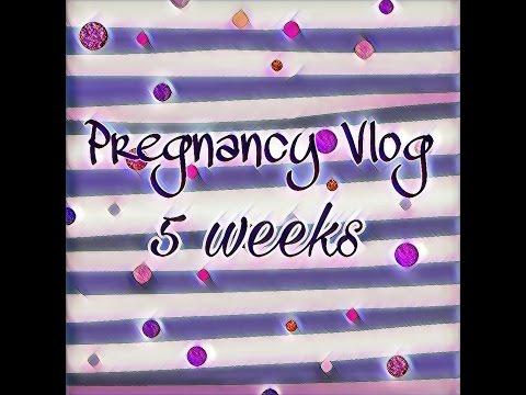 5 Weeks Pregnant via IUI! Twins?