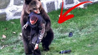 TOP 5 DEATHS OF ANIMAL TRAINERS