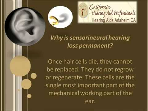 Hearing Loss | Anaheim CA