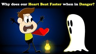 Why does our Heart beat Faster when in Danger? + more videos | #aumsum #kids #education #children