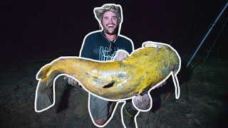 RIVER FISHING for MONSTER CATFISH at NIGHT!!! (Catching Record-Breaking Flathead!)
