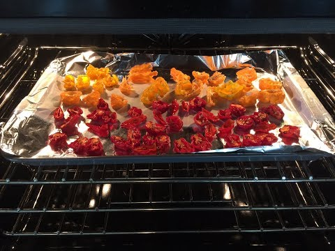 Making Superhot Pepper Flakes Using Peppers From My Garden