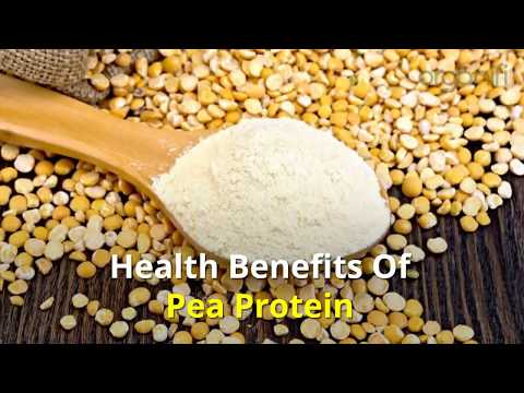 Health Benefits Of Pea Protein
