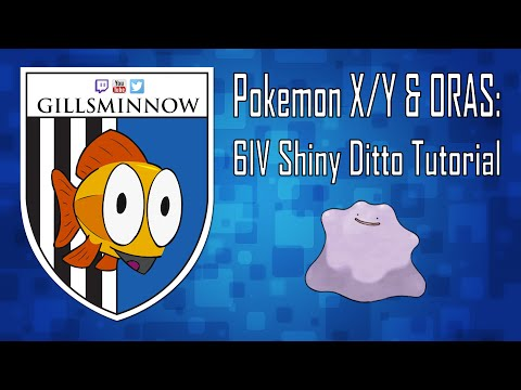 Pokemon X/Y & ORAS: 6IV Shiny Ditto Tutorial
