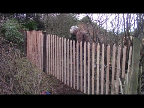 Rabbit Proof Fence – The Video. (Fencing For Free Range Rabbits)