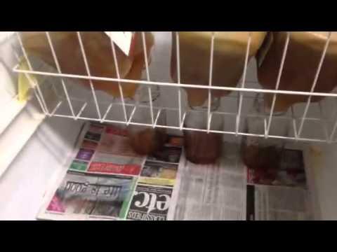 Ice filtering applejack