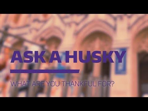 Ask a Husky: Thanksgiving