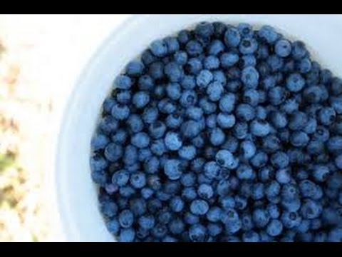 Natural ways to remove pesticides from berries