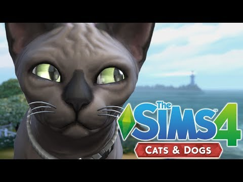 CAT BREEDING - The Sims 4 Cats and Dogs | Episode 29