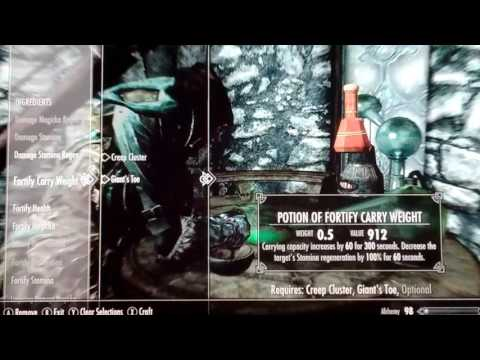 The Most Expensive Potions In Skyrim!