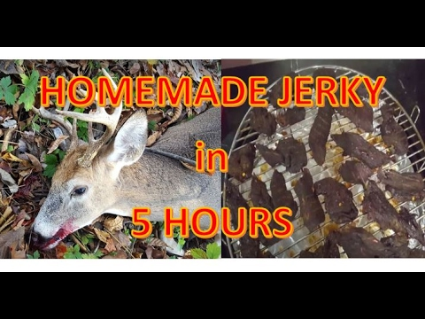 How to make JERKY from Raw Meat in 5 hours!