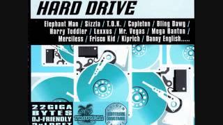 Fowl Fight Riddim Mix (2005) By DJ WOLFPAK