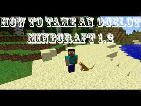 HOW TO TAME AN OCELOT IN MINECRAFT 1.2