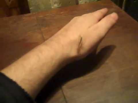 I love house centipedes.