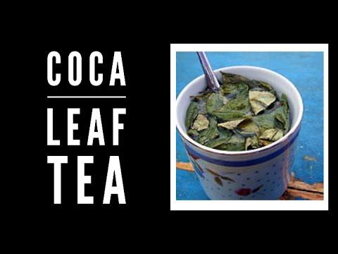 Exam herbal tonic with coca leaf tea