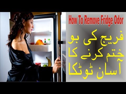 how to remove fridge odor remove fridge bad smell in urdu