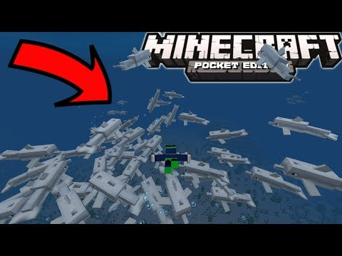 Things To Do In Minecraft 1.4 Aquatic Update: SWIM WITH 10000 DOLPHINS