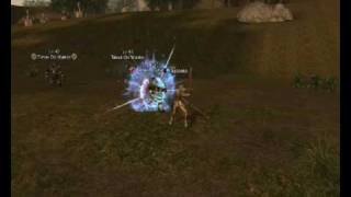 L2 Gameplay Gladiator