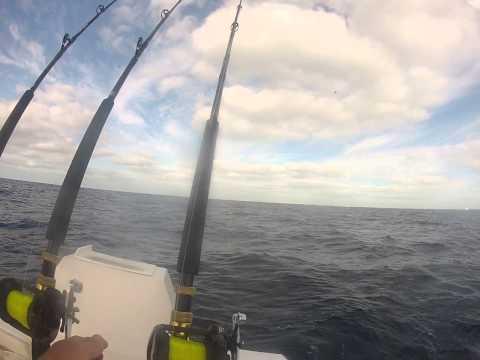 Catching Sailfish on the Fearless, Islamorada, FL