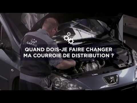 Courroie de distribution : Les conseils de nos garagistes / Top Entretien #4  (avec Denis Brogniart)