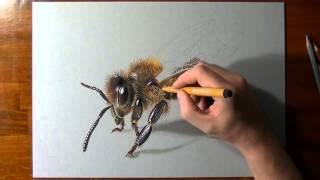 How I Make Bee