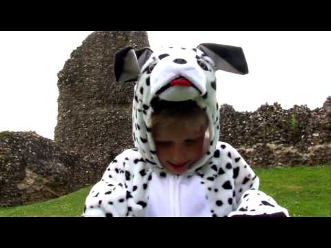 Dalmatian Dog Costume at Gifts For A Girl