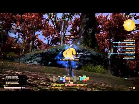 Gameplay 8 - Final Fantasy XIV PS4 Beta