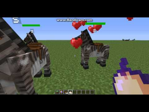 how to spawn a zorse in mo creatures minecraft 1.6.4 and 1.7.2