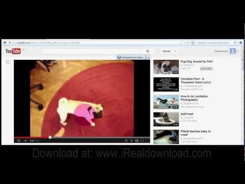 Download Youtube Video Free Download Video