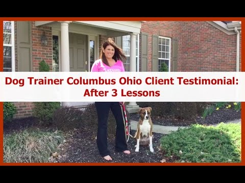 Dog Trainer Columbus Ohio Client Testimonial: After 3 Private Lessons with Terry Cook