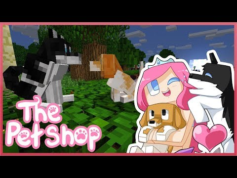 THE PET SHOP! Ep.1 The Two Stray Dogs   Minecraft ROLEPLAY