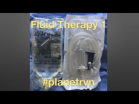 #planetrvn #OSCE tips revision - fluids part 1
