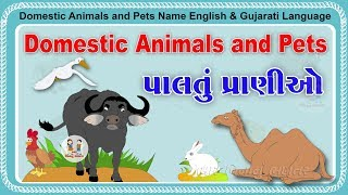 Bhar Vinanu Bhantar Videos - The Most Popular High Quality Videos