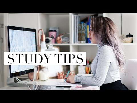 5 Tips For How To Stay Organized As A Law/University Student