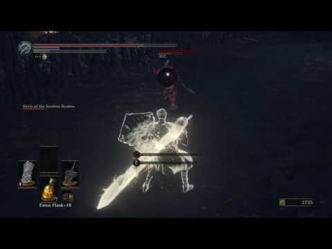 DARK SOULS III (PS4) - Holy Knight Hodrick with Sirris Of The Sunless Realms - NG+
